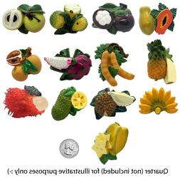 Refrigerator Magnets Exotic Fruits Set of 12 Pieces Hand Pai